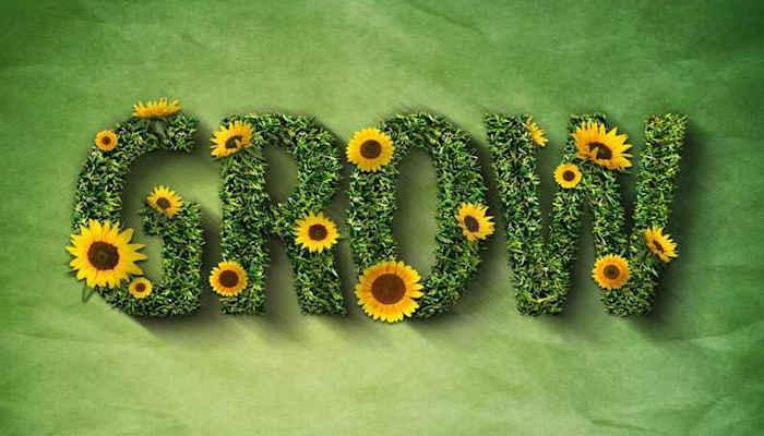 Grow: ¿Acaso las plantas no pueden romper un muro?